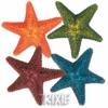 Barevné dekorační hvězdice