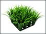Dekorace Fluval CHI tráva