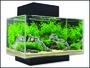 Akvárium set FLUVAL Edge LED Black