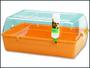 Box RODY Cavia oranžový