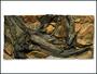 Pozadí AE Amazonia 100 x 50 cm