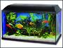 Akvarium set 80, 80x30x40cm