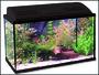 Akvárium set BALI 80 x 40 x 30 cm