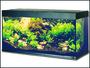 Akvarium Rio LED 240 bílé